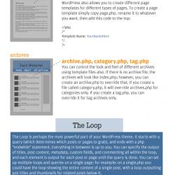 anatomy-wordpress-yoast